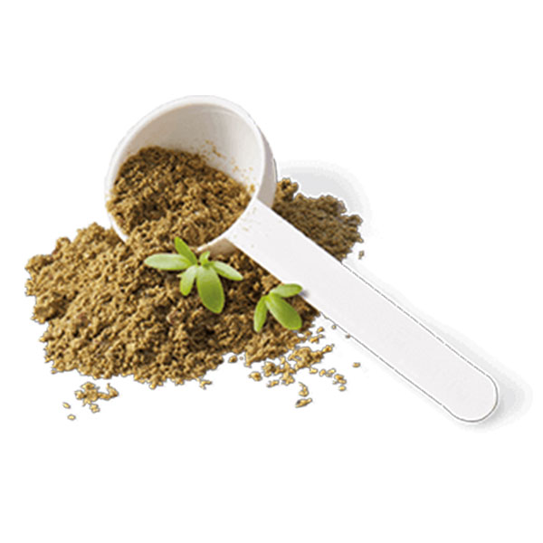 Hokamix 30 Original Herbal Supplement
